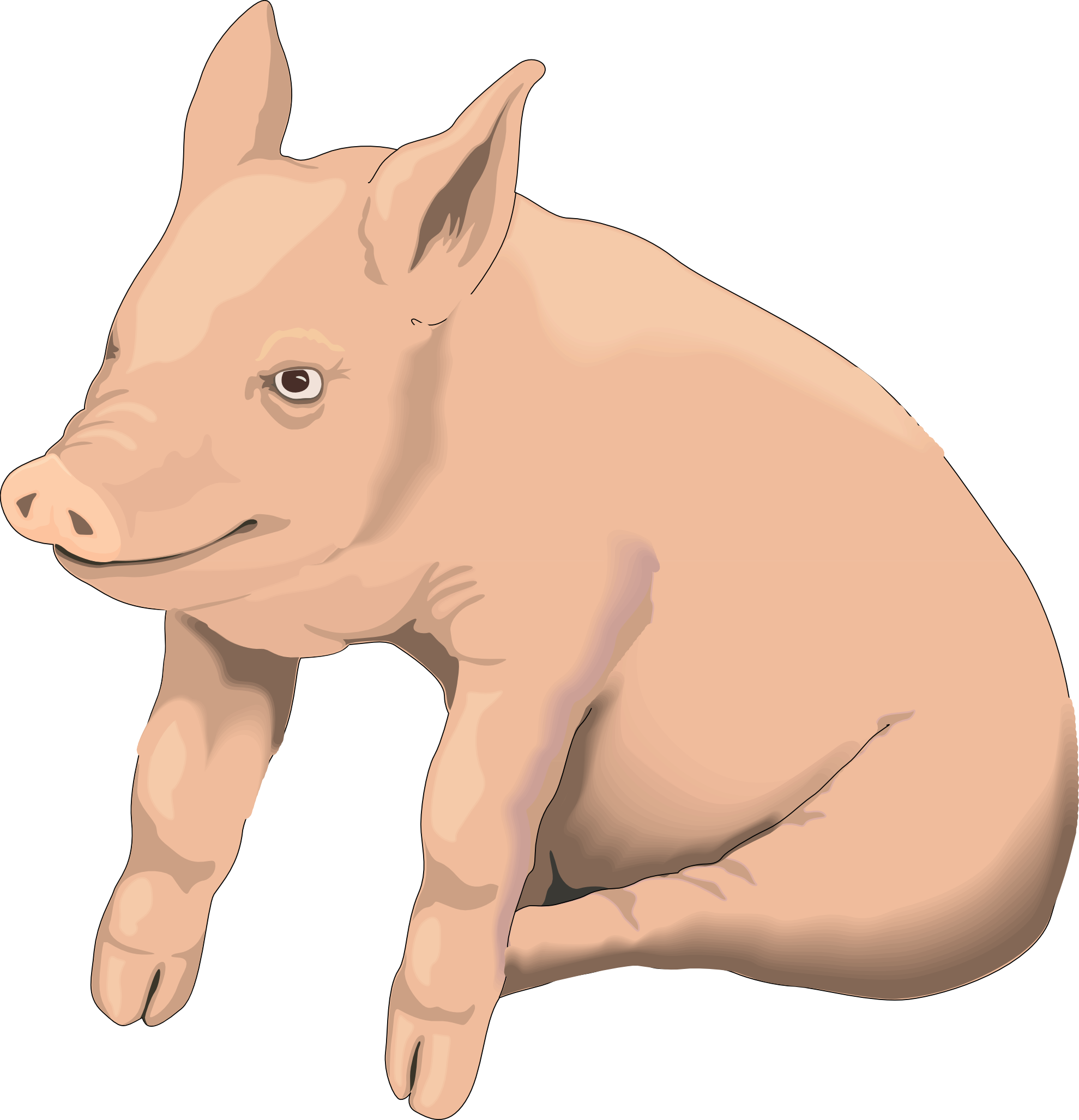 Isolated stock photo by. Monkey clipart pig