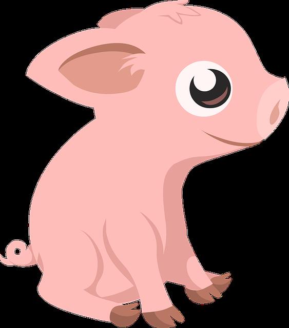 Free image on pixabay. Clipart pig body
