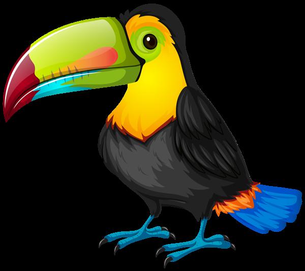 Toucan Cartoon PNG Transparent Image