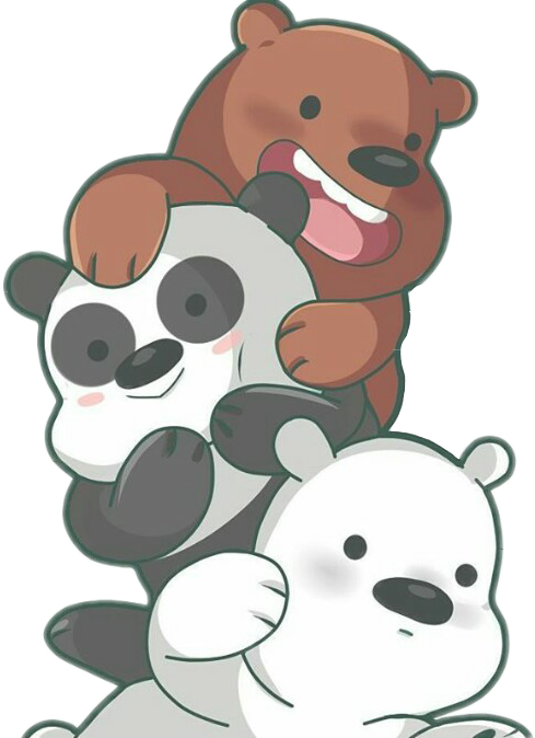 Clipart animals report. Osos panda pardo polar