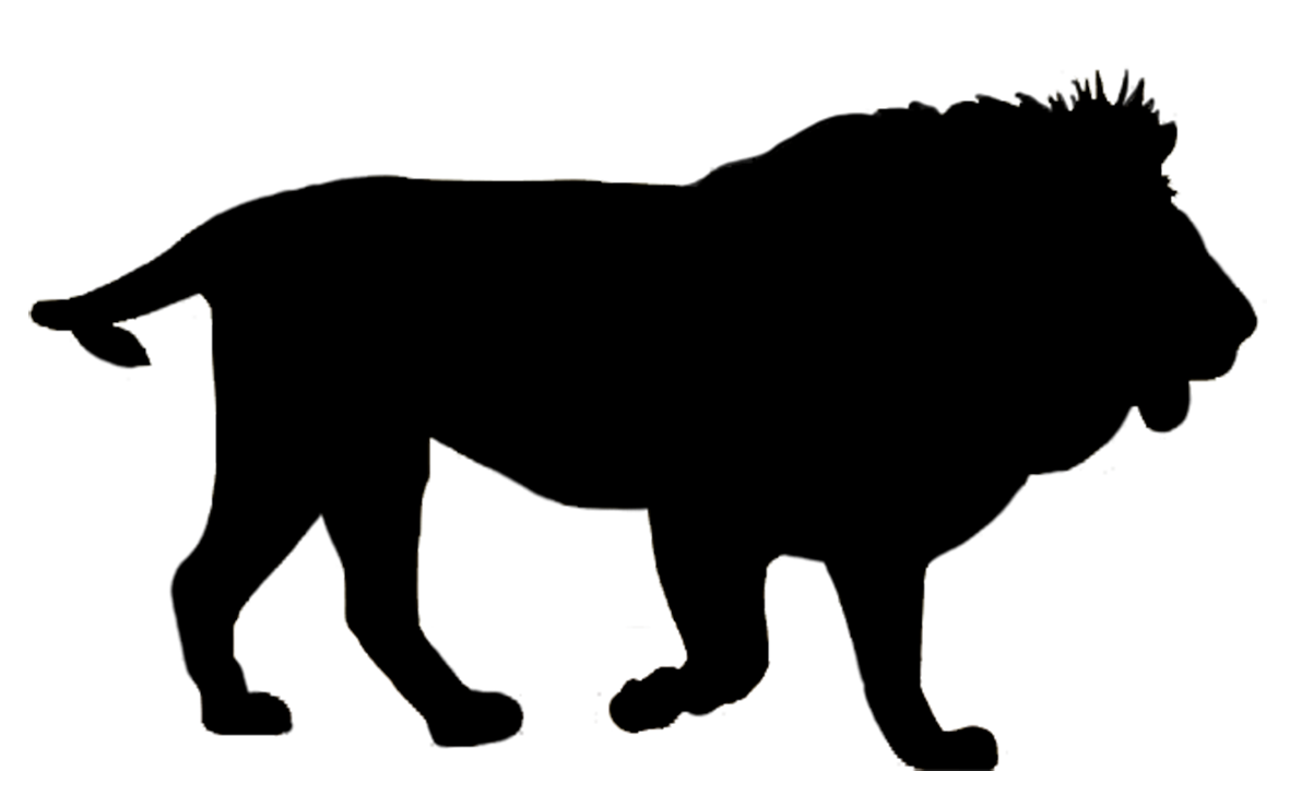 Clipart zebra shadow. Liion silhouette zoo animals