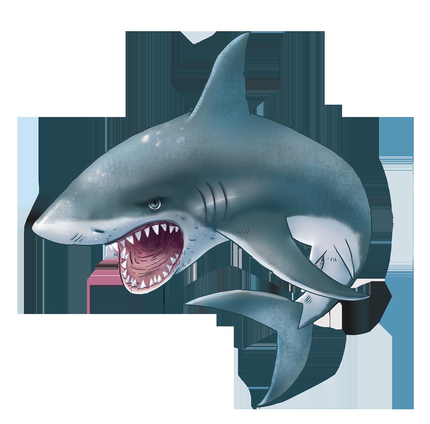 Png sea animals clip. Clipart fish shark