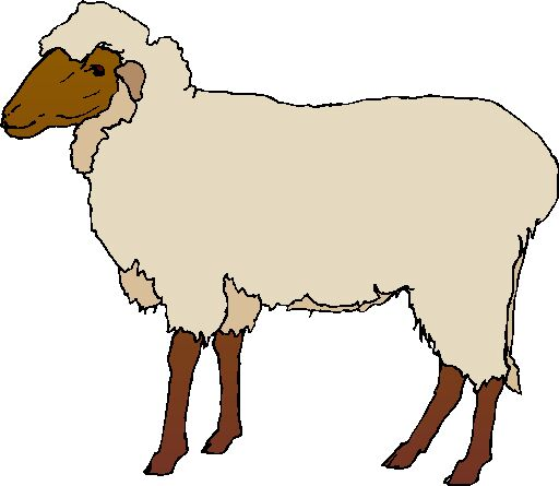 Clipart sheep ewe. Free cliparts download clip