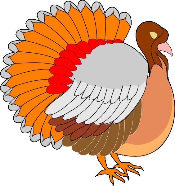 Turkeys vector