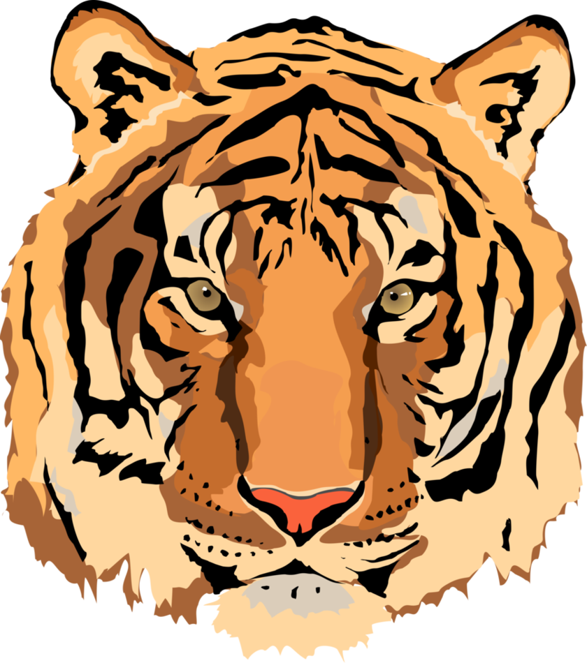 Face clipart tiger. For kids at getdrawings