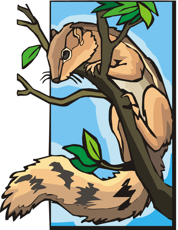 Free in a. Clipart tree squirrel