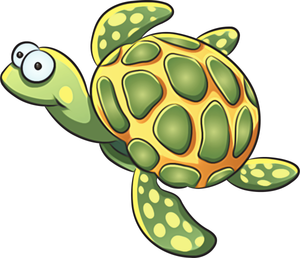 Shell clipart sea turtle. Pin by on pinterest