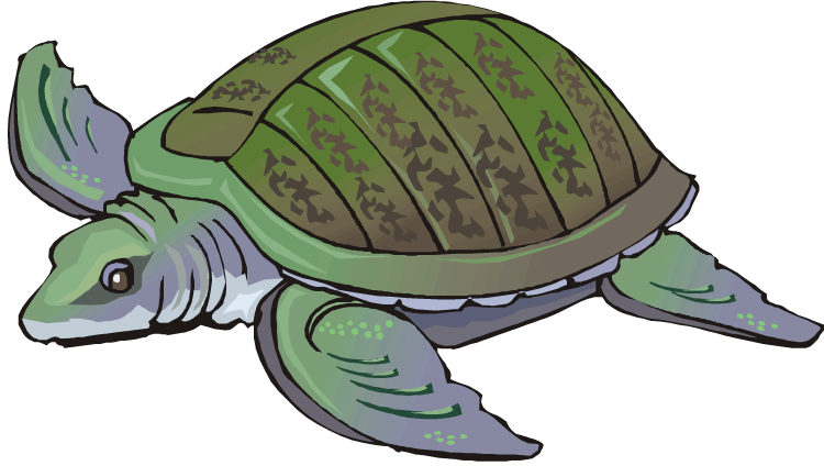 Clipart turtle month. Free swimming