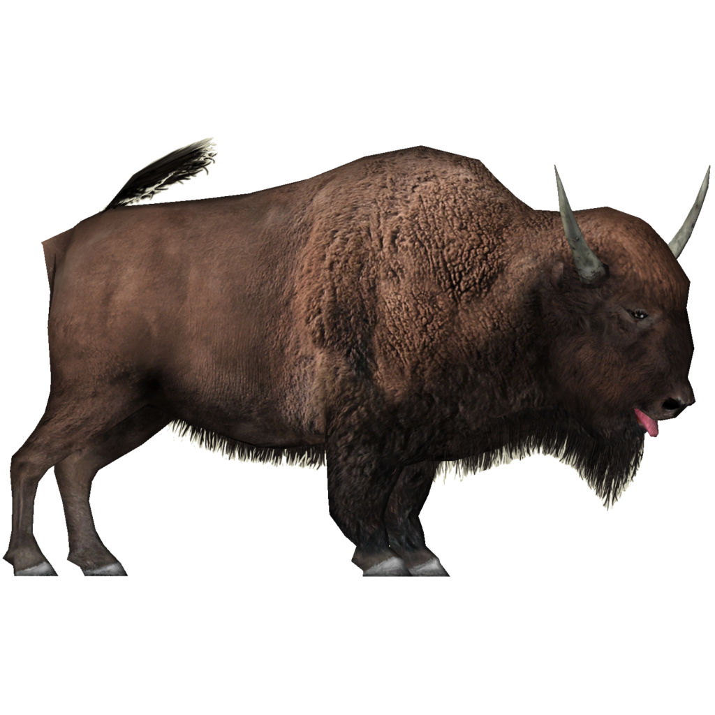 Yak animal png images. Bison clipart transparent
