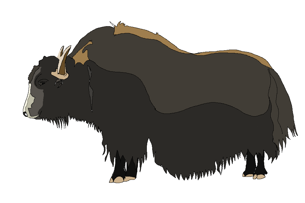 Clipart animals yak. Color free images at