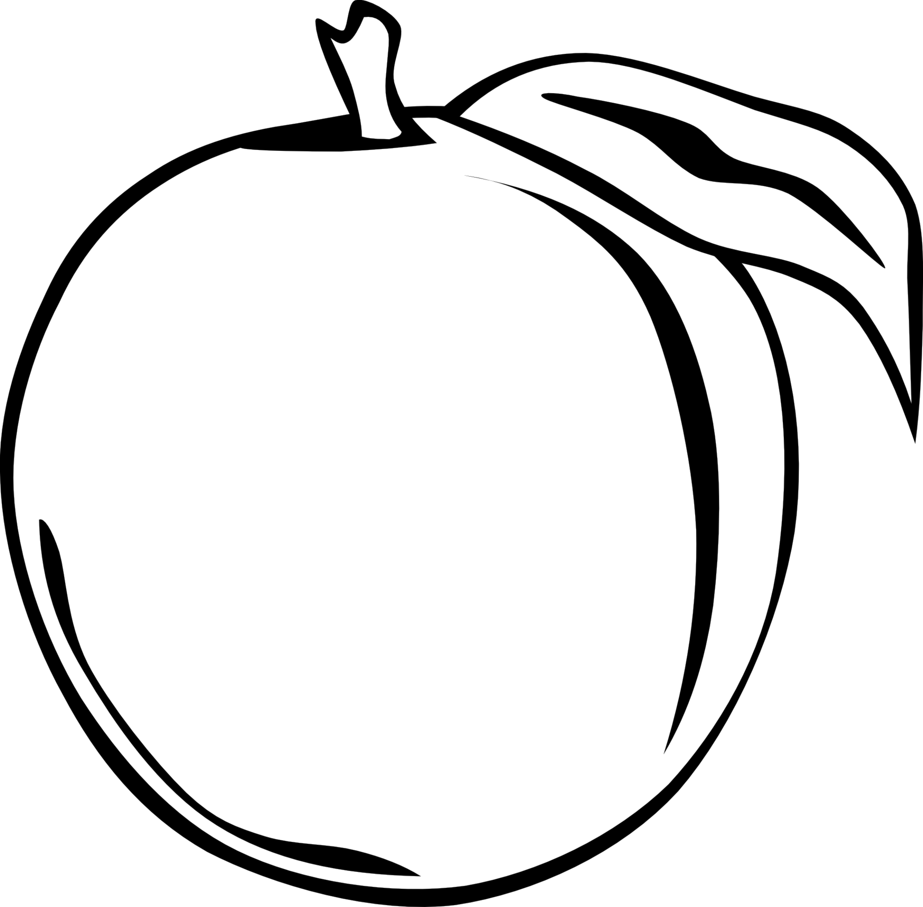 Fruits clipart black and white.  collection of apple