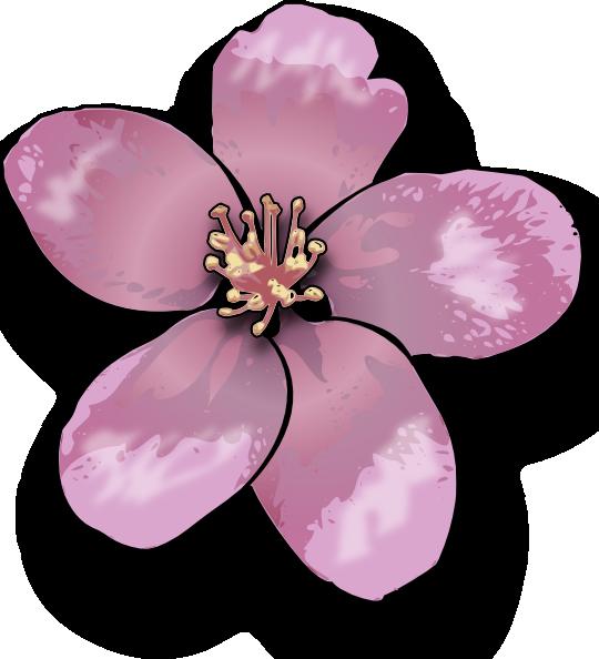 Clip art at clker. Clipart tree apple blossom