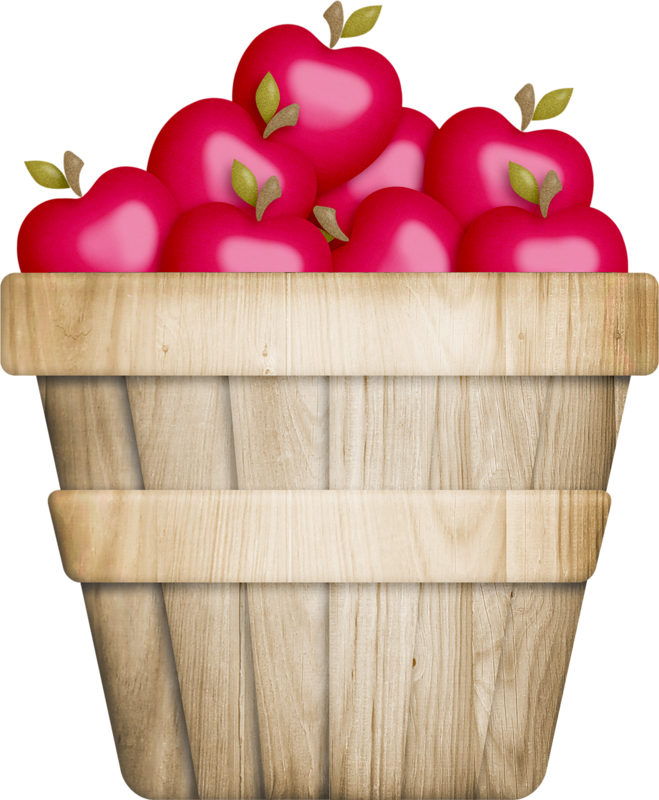 Fruit clipart bucket.  collection of basket