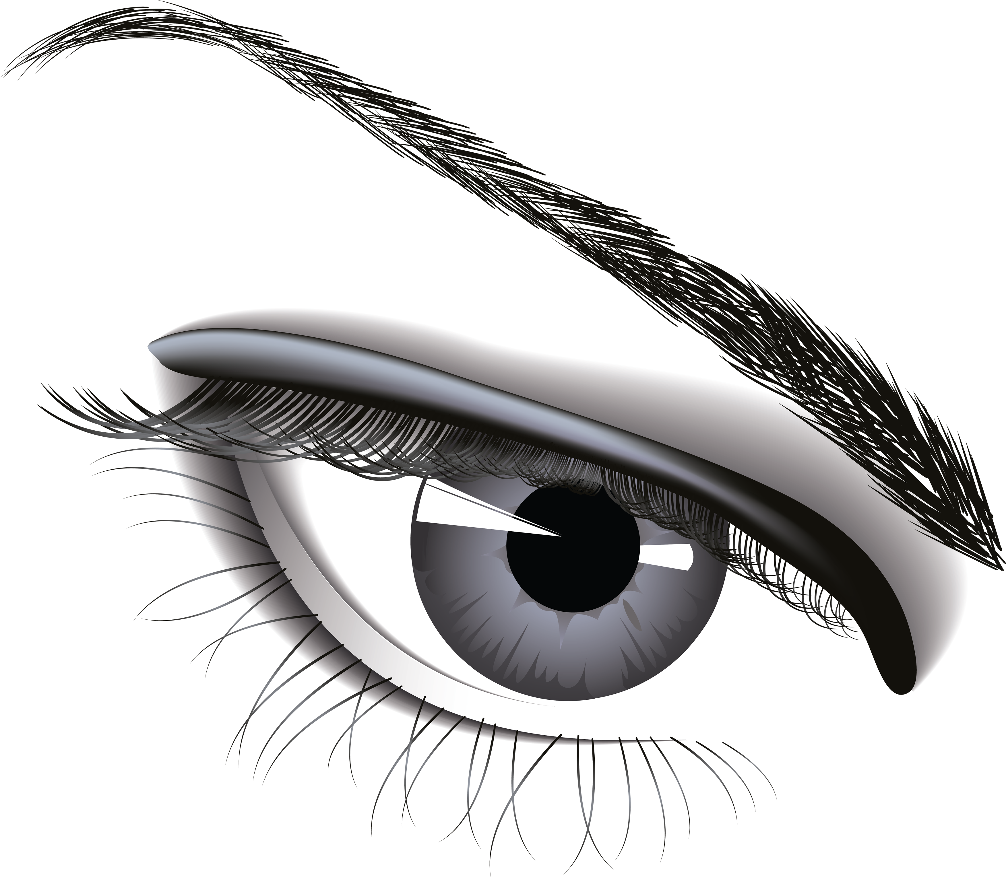 Eye six isolated stock. Vision clipart vector