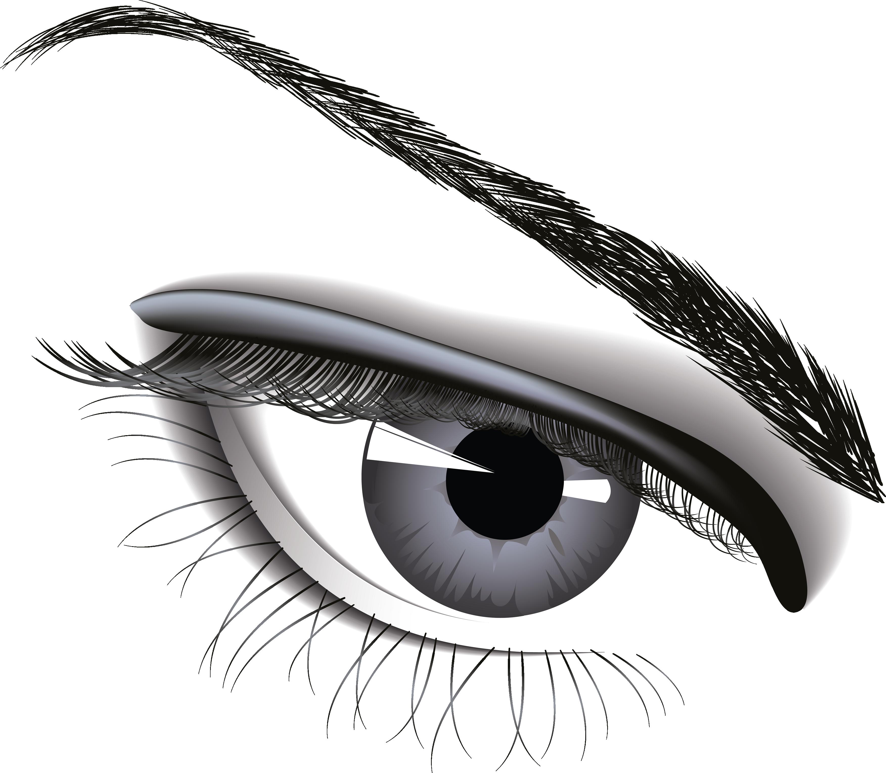 Eyelash clipart illustration. Eye six isolated stock