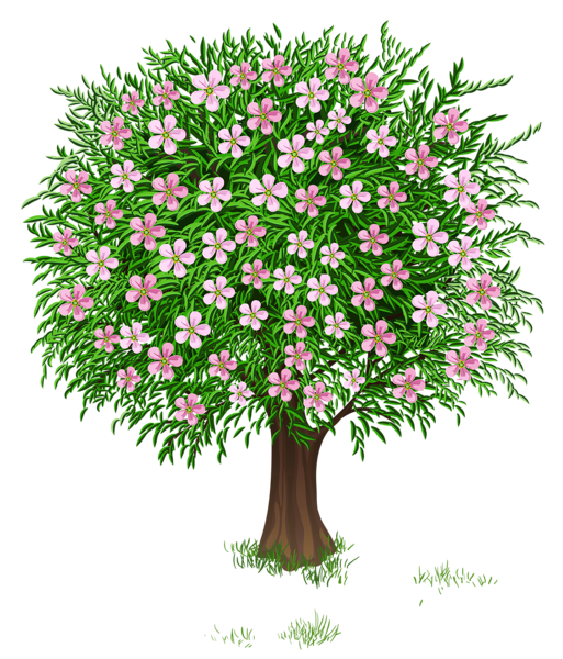 Poetry clipart tree flower.  png