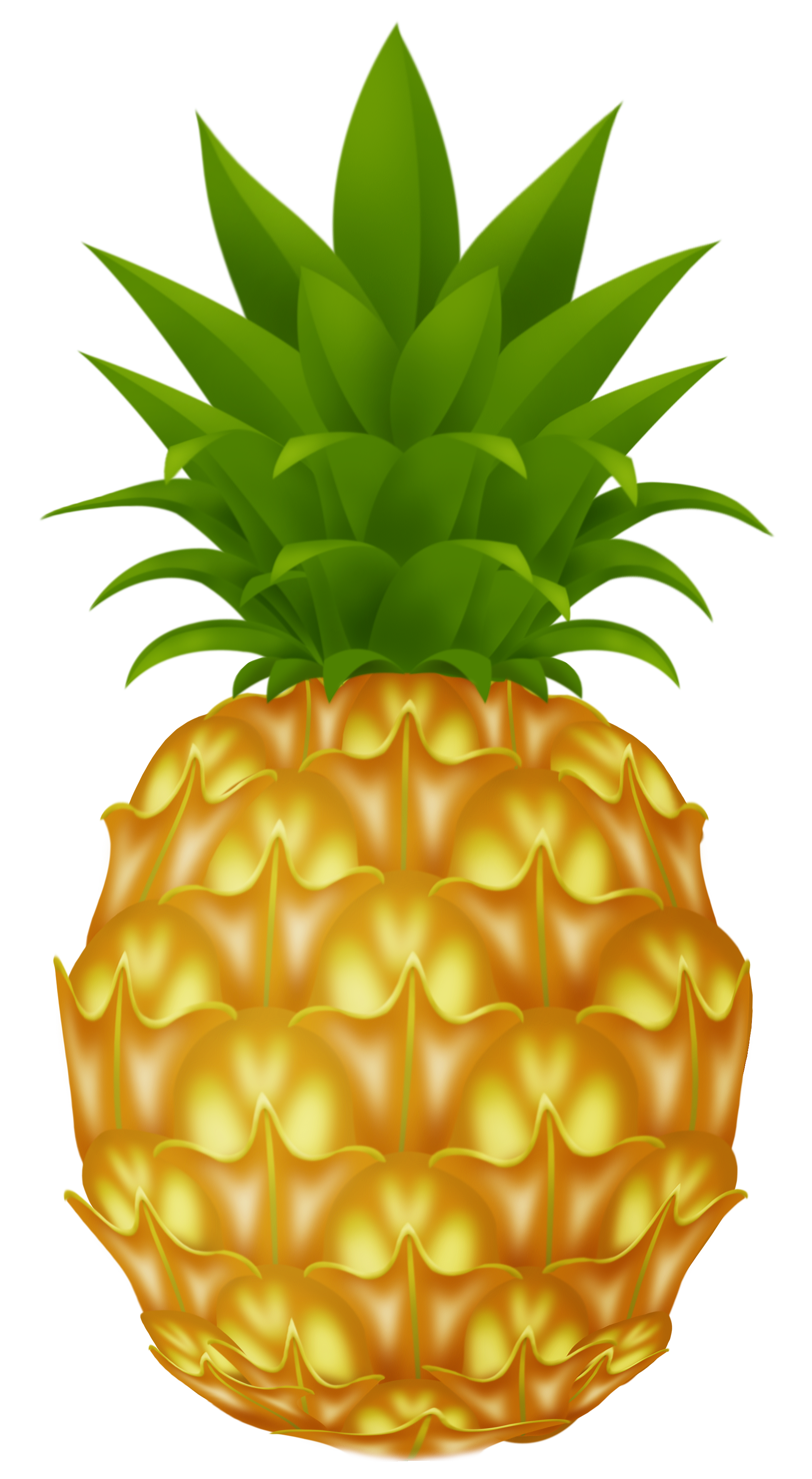 Png picture clip art. Pineapple clipart animated