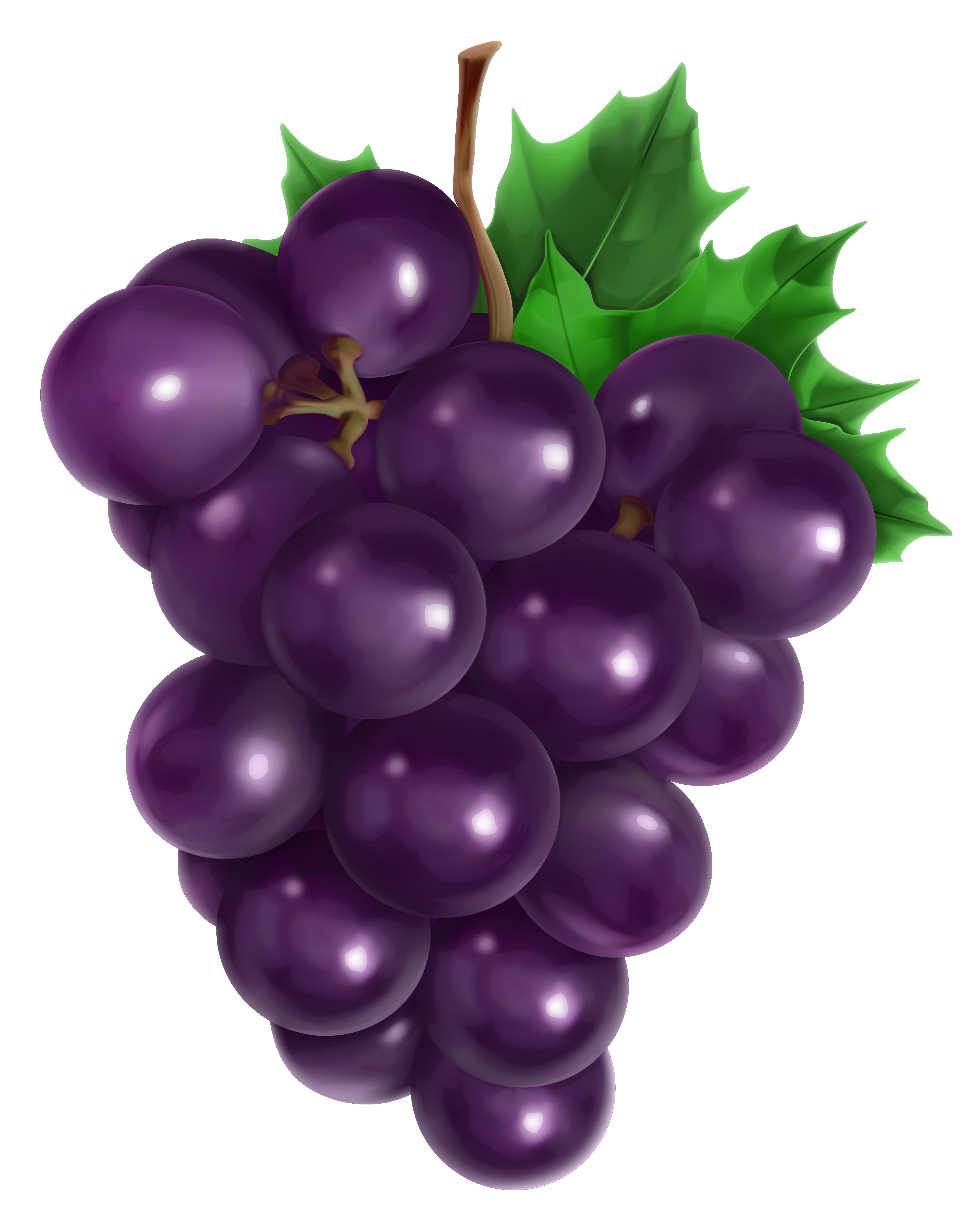 Vegetables clipart fair. Transparent grape png picture