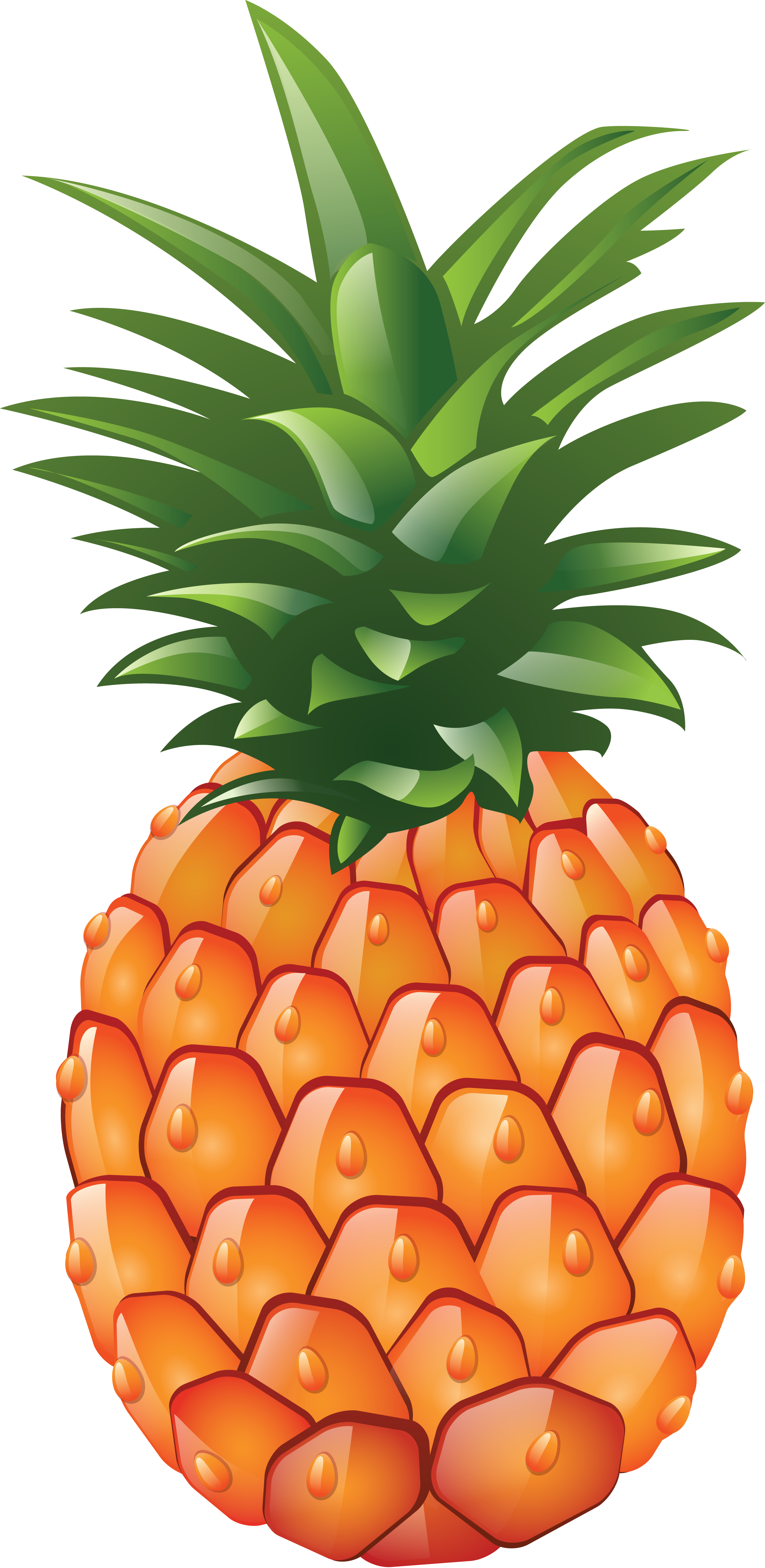 Pinapple png image purepng. Pear clipart pineapple