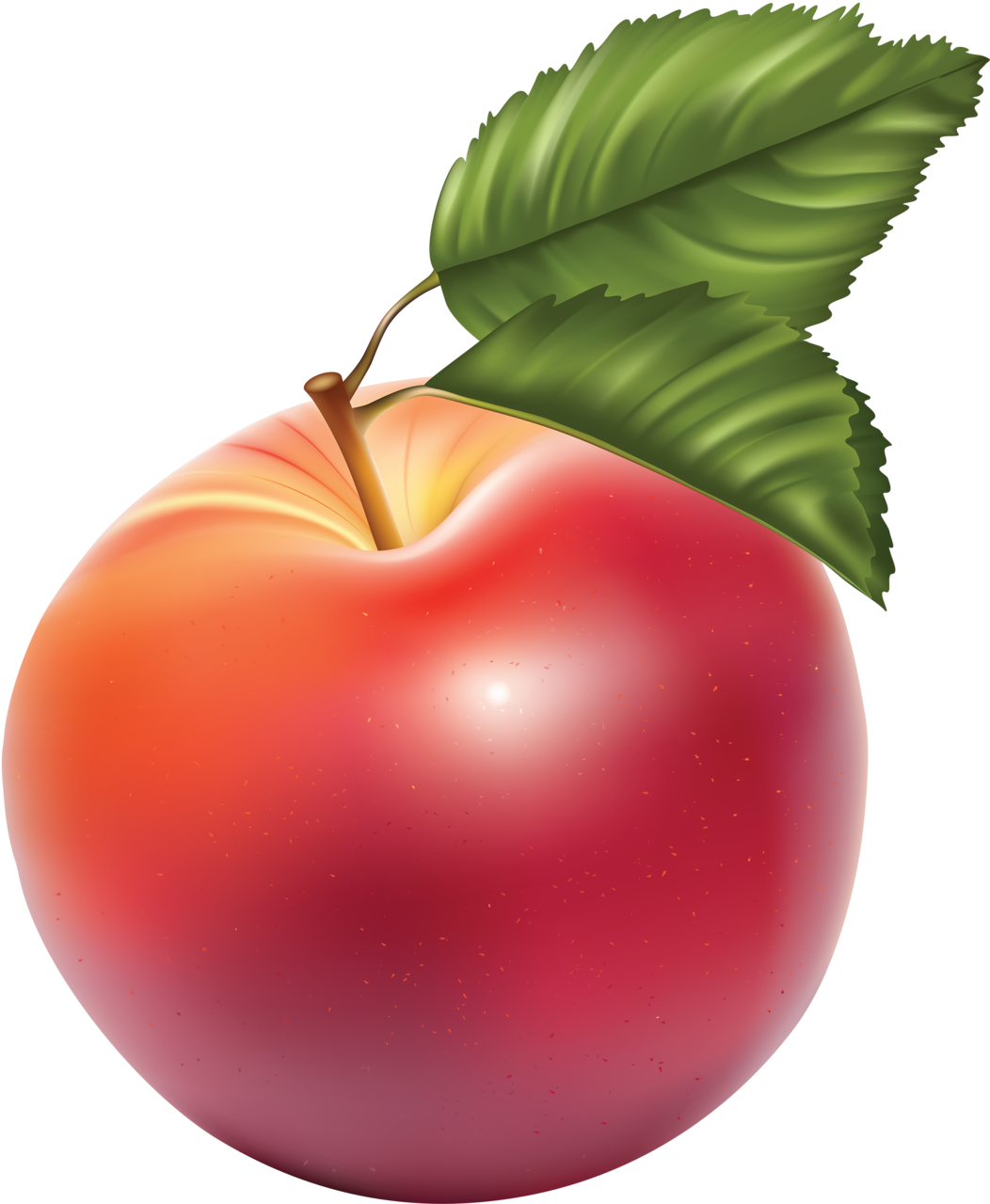 Redapp png pinterest clip. Clipart fruit spring
