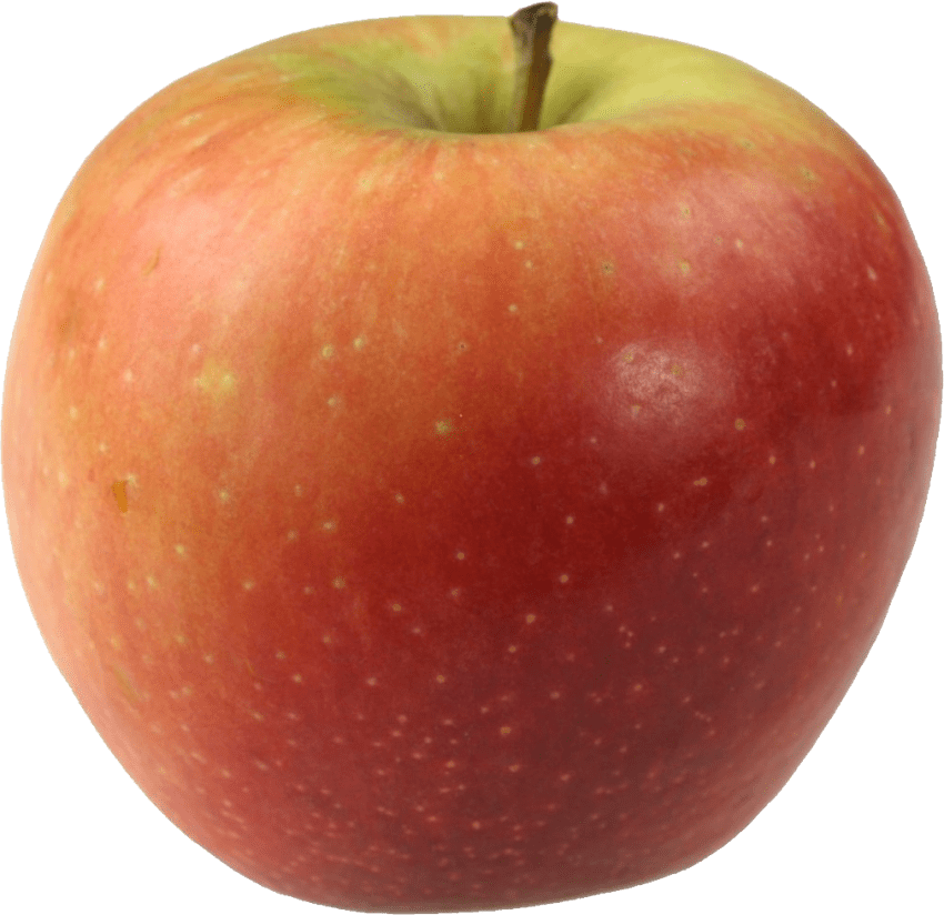 Snake clipart apple. Red png free images