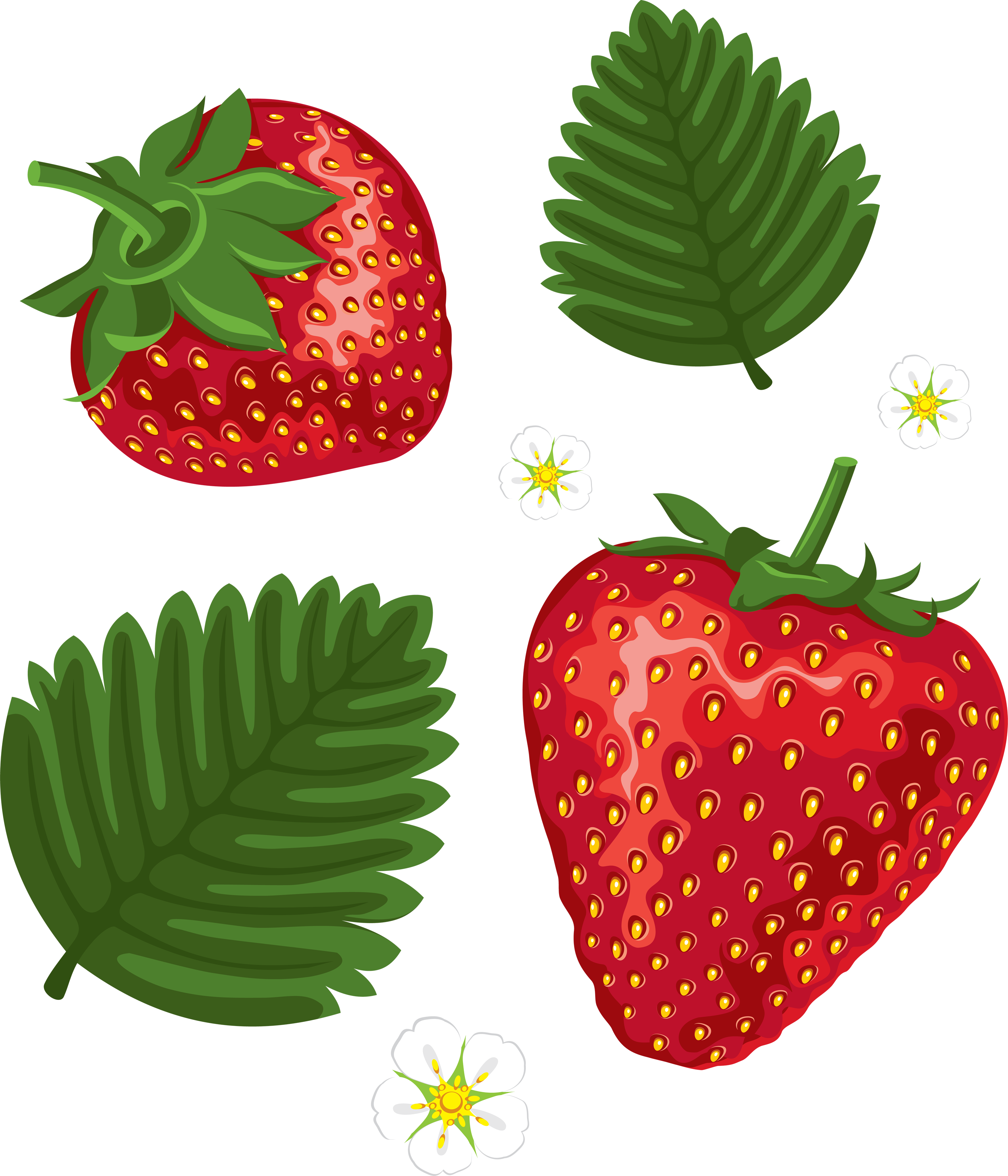 Clipart png strawberry. Image purepng free transparent