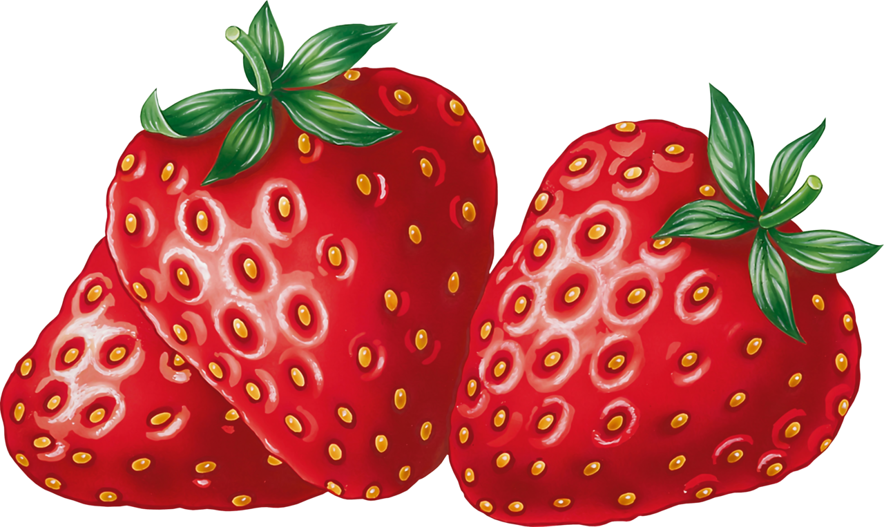 strawberries clipart strawberry patch #144462071