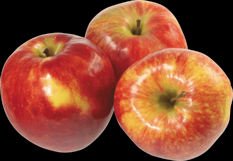 Fruit png images free. Clipart apple transparent background