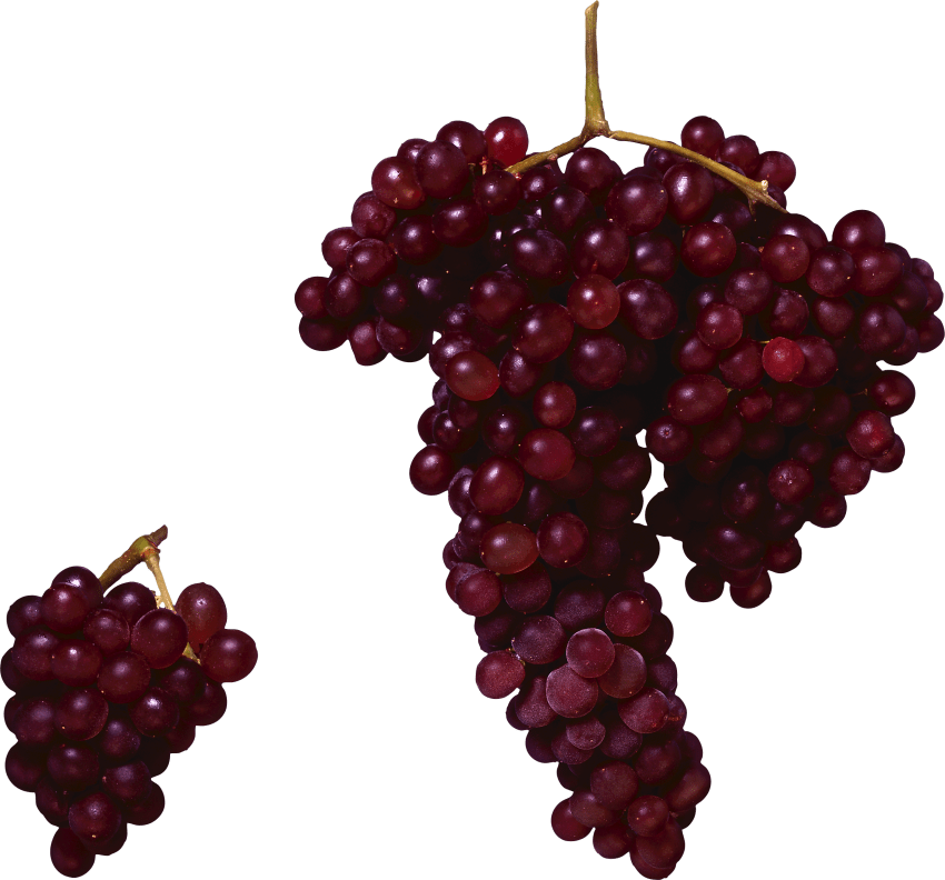 Red grapes png free. Grape clipart grape soda
