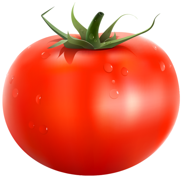 Clipart vegetables printable. Tomato png picture fruits