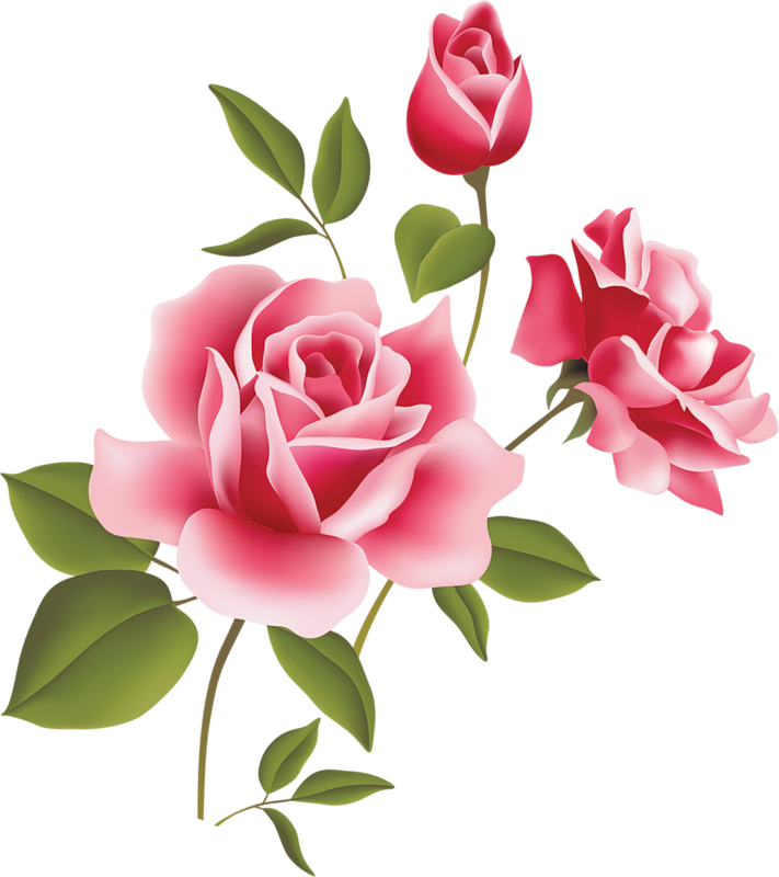 Clipart flowers cat. Pink rose art picture