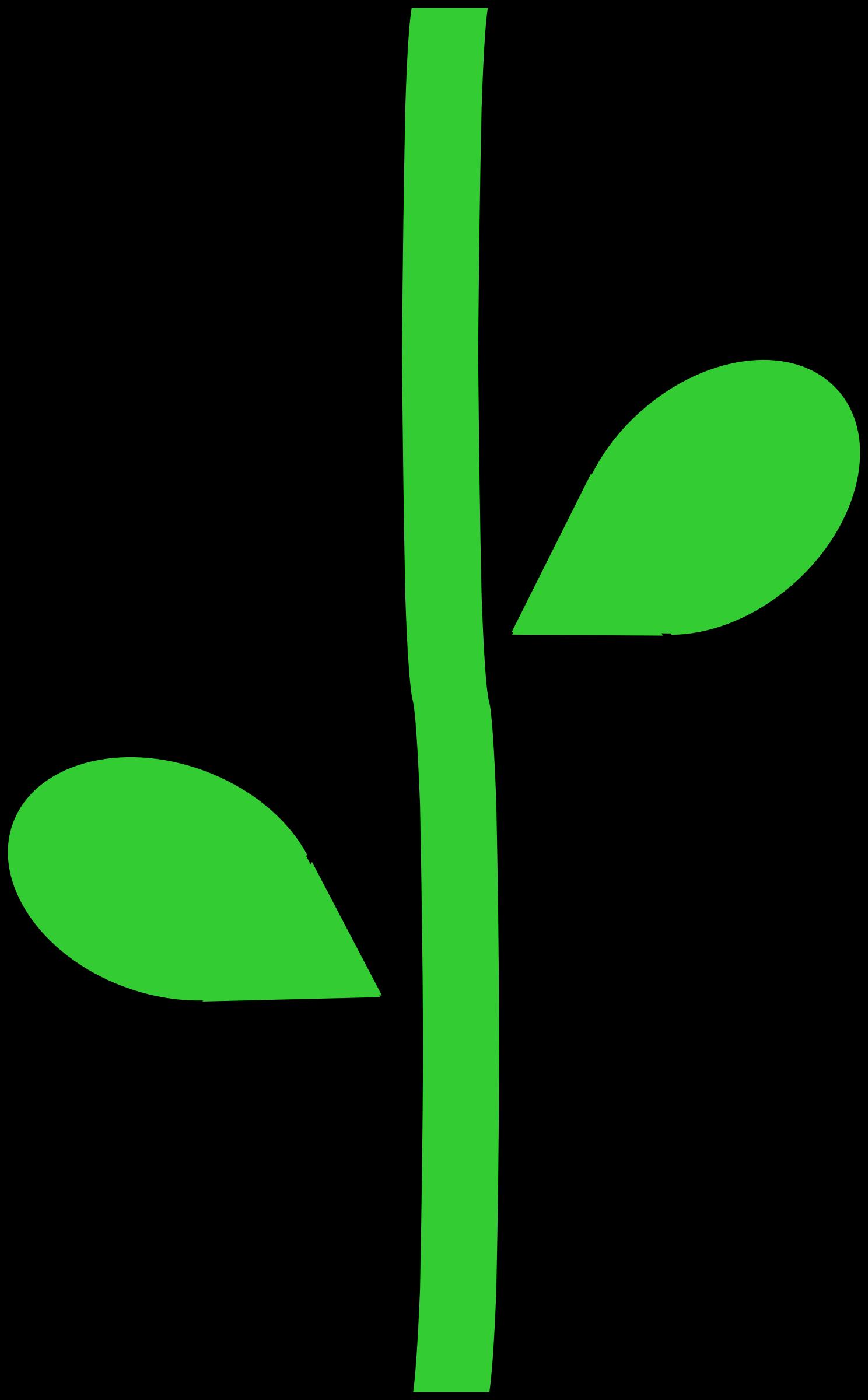 Leaf clipart boho. Plant stem flower clip