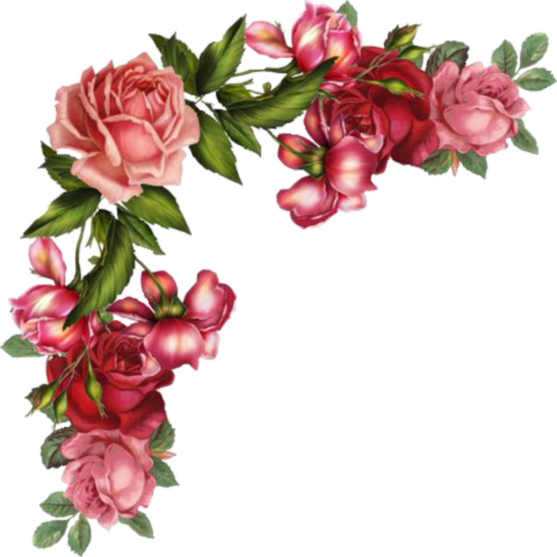 Free digital images vintage. Clipart rose illustration