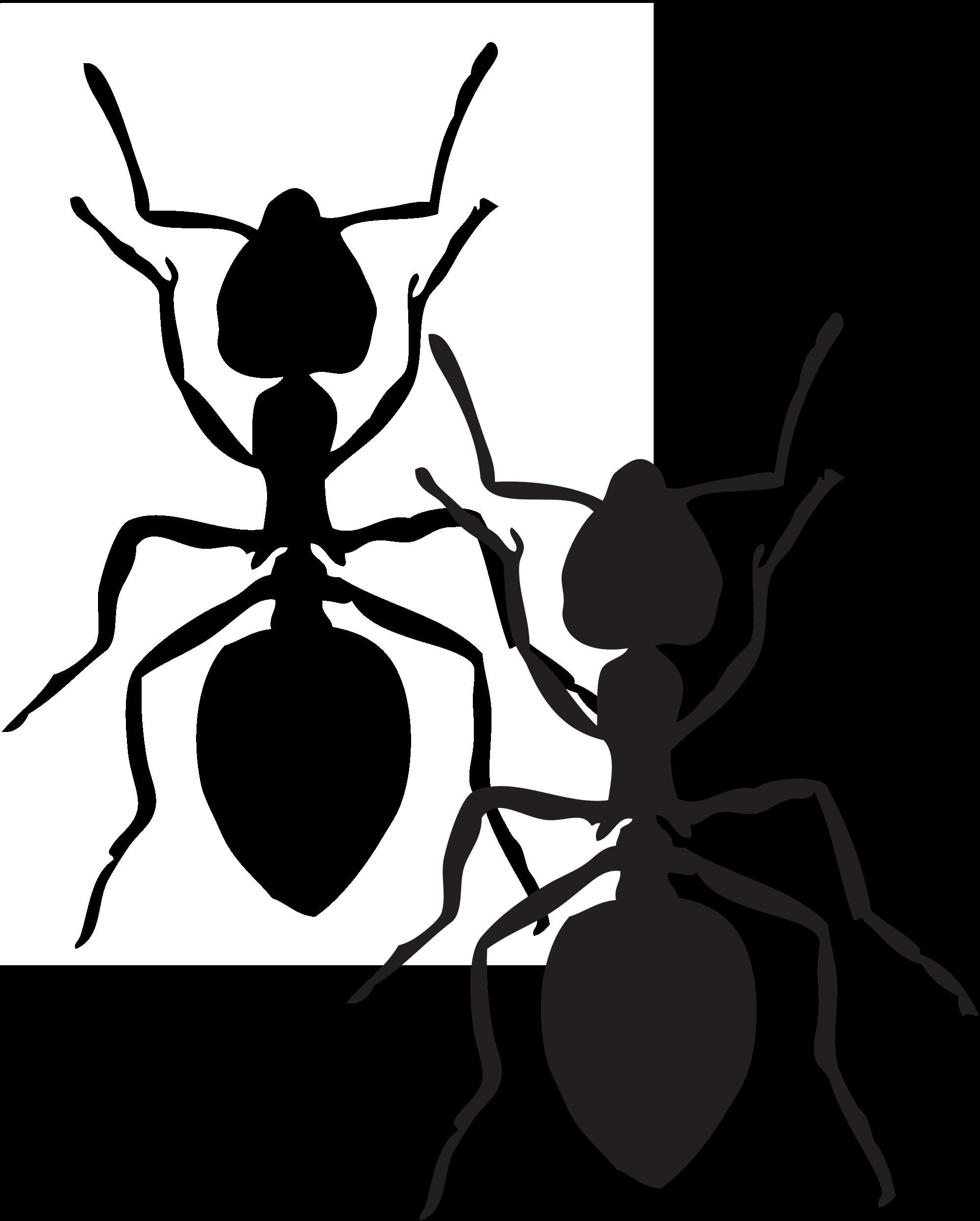 Free clipart ant. Panda images antclipart