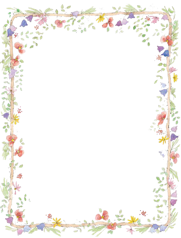 Daisies clipart frame. Borders transparent png pictures