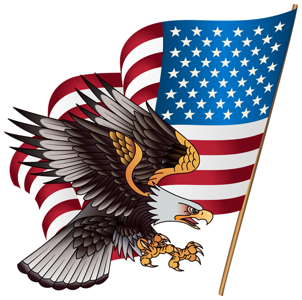 Firework clipart american flag. Eagle transparent png clip