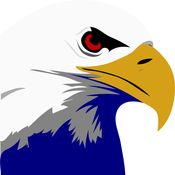 Bald at getdrawings com. July clipart eagle