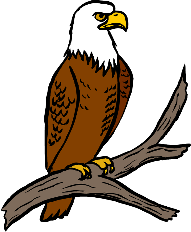 collection of eagles. Eagle clipart easy