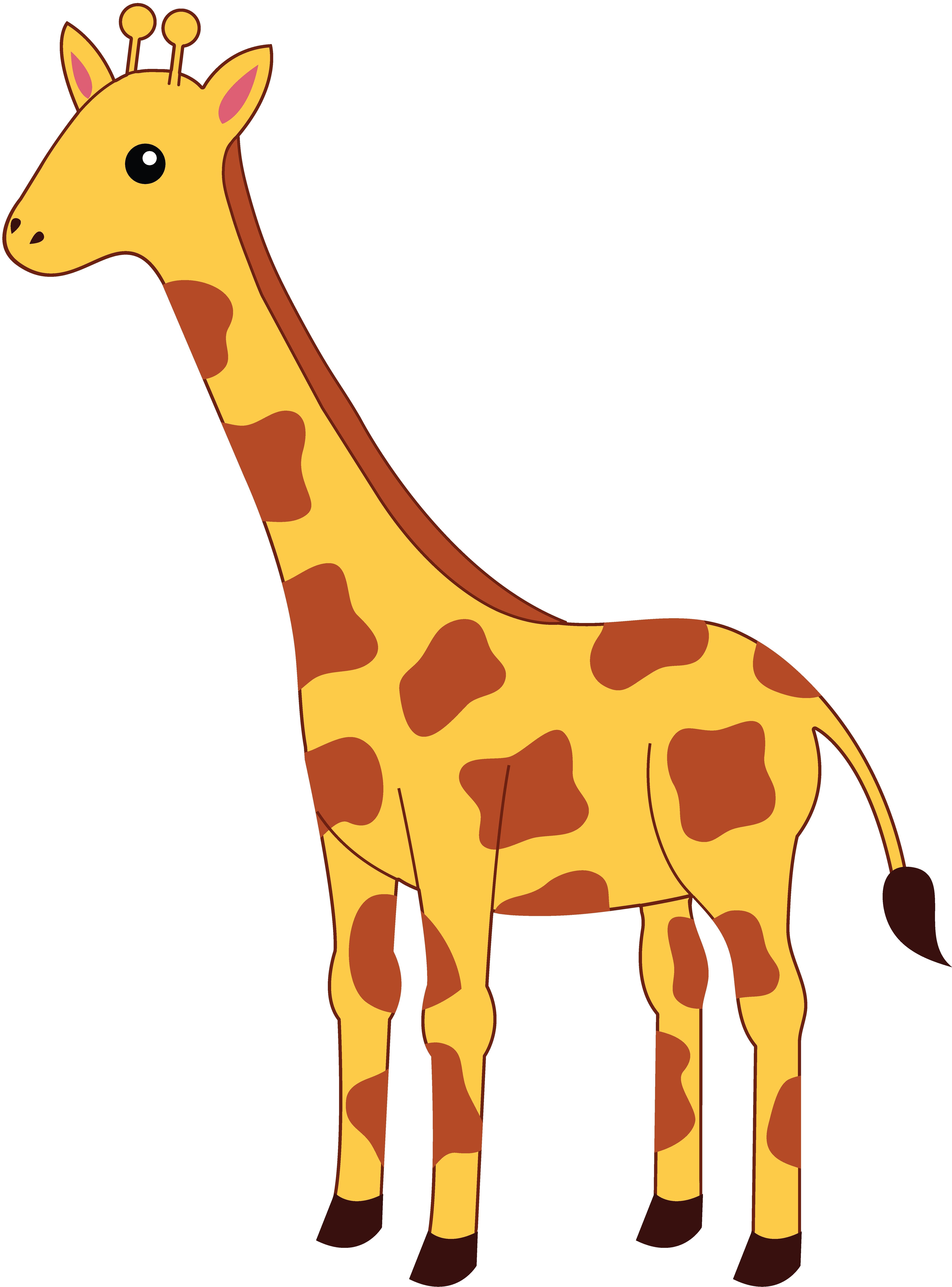 Baby panda free images. Clipart giraffe skin