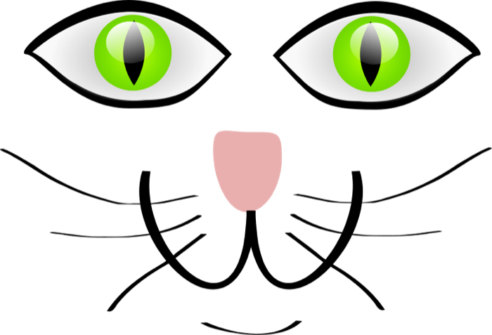Free cat face. Head clipart kitty