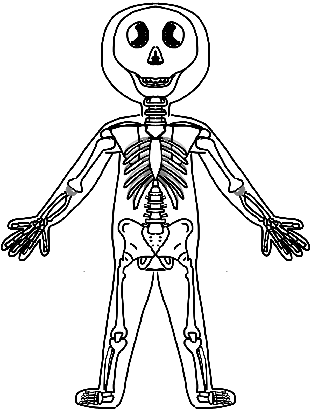 collection of skeleton. Bones clipart body