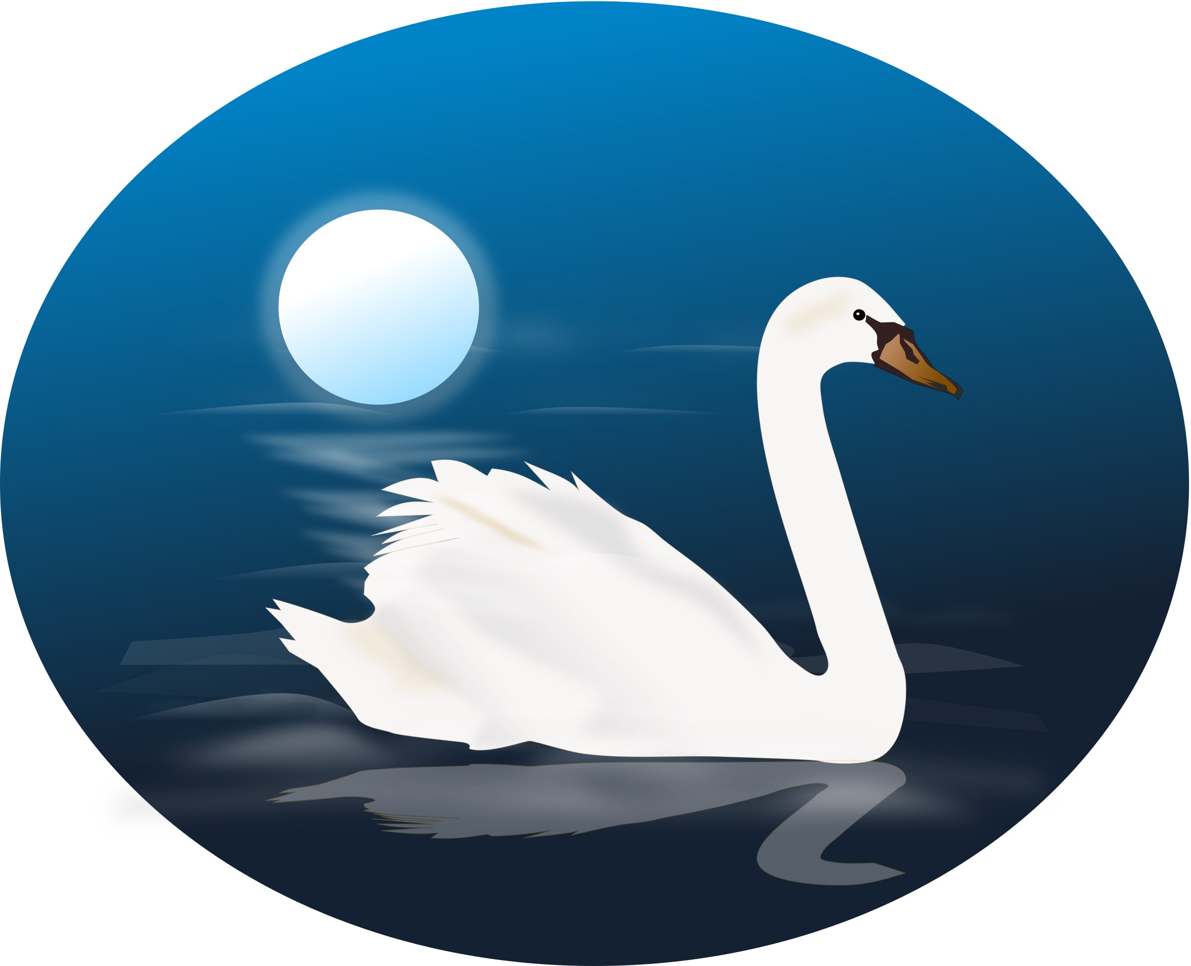 Swan photo transparentpng . Ducks clipart blue