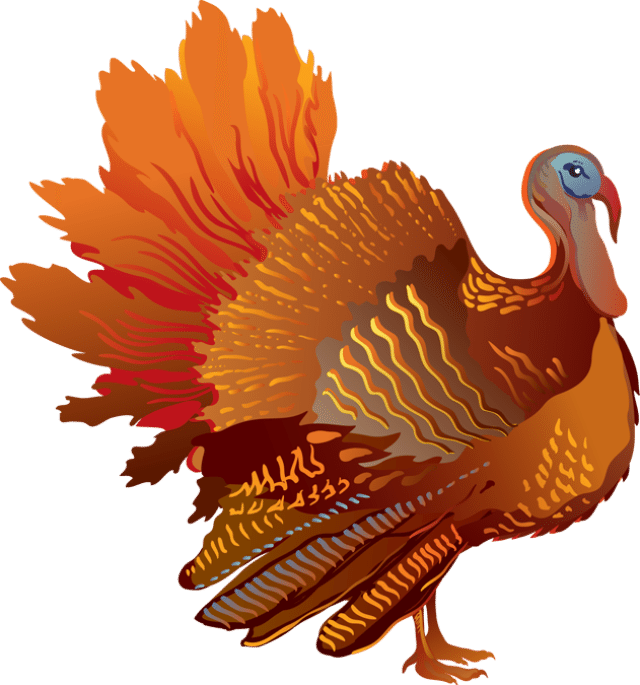 Colorful clip for the. Clipart turkey pop art