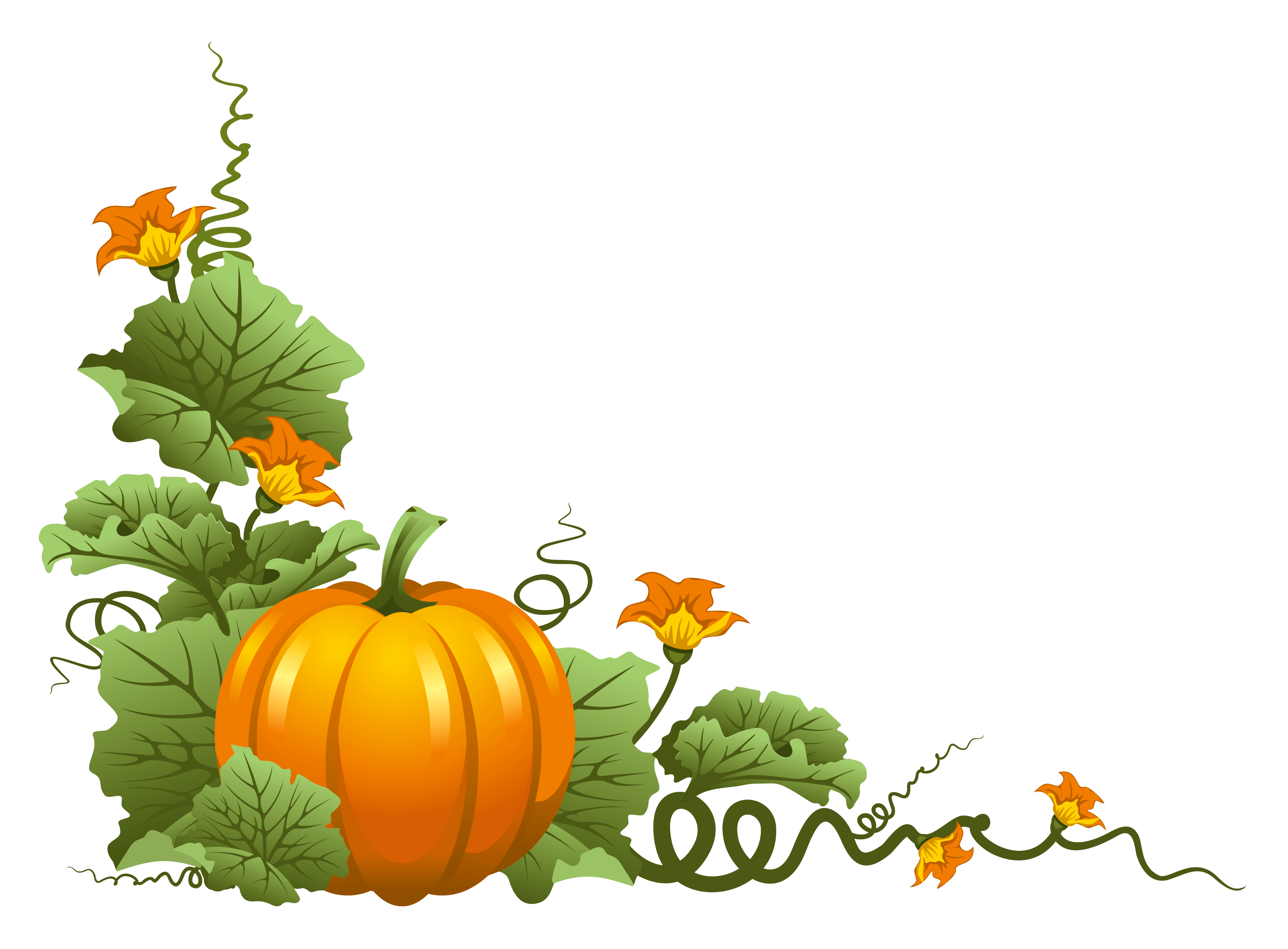 November pumpkin. Clipart transparent free for