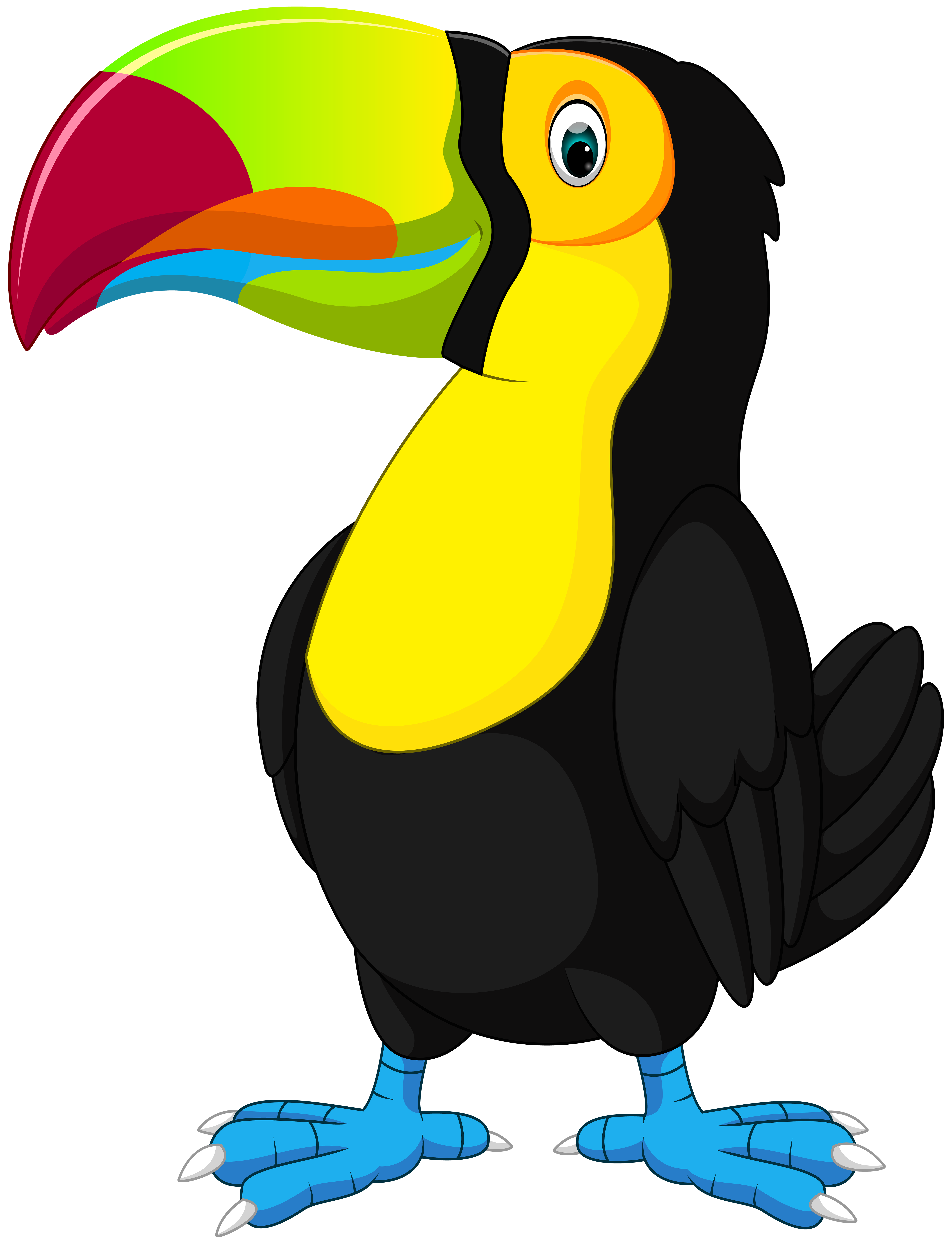 Free all about cartoon. Toucan clipart christmas
