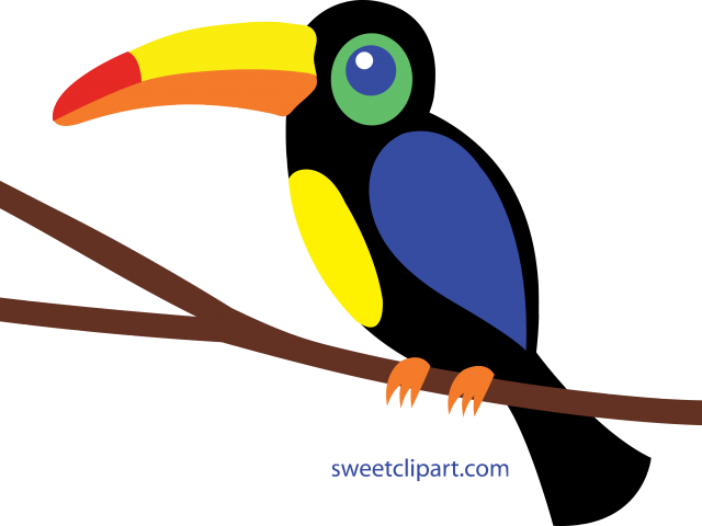 jungle clipart toucan