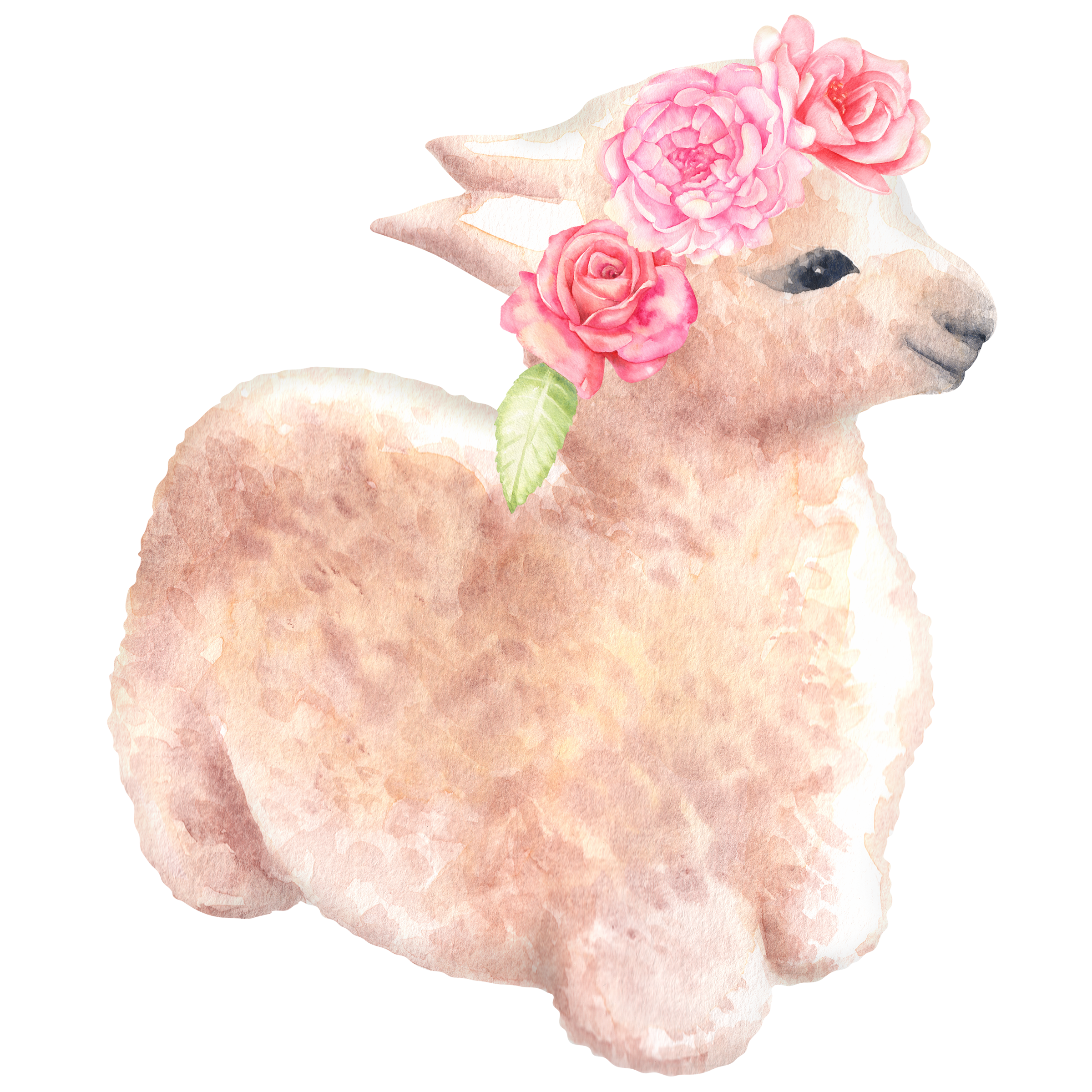 Woodland clipart watercolor. Llama graphics baby alpaca