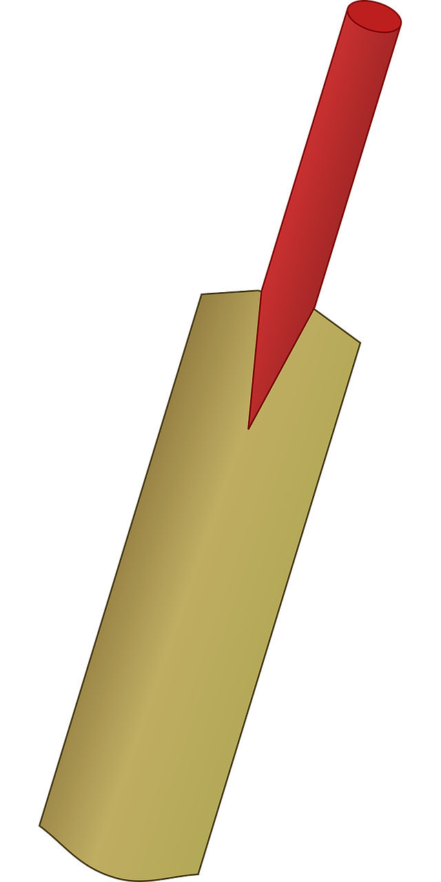Bats baseball batting clip. Clipart ball cricket bat
