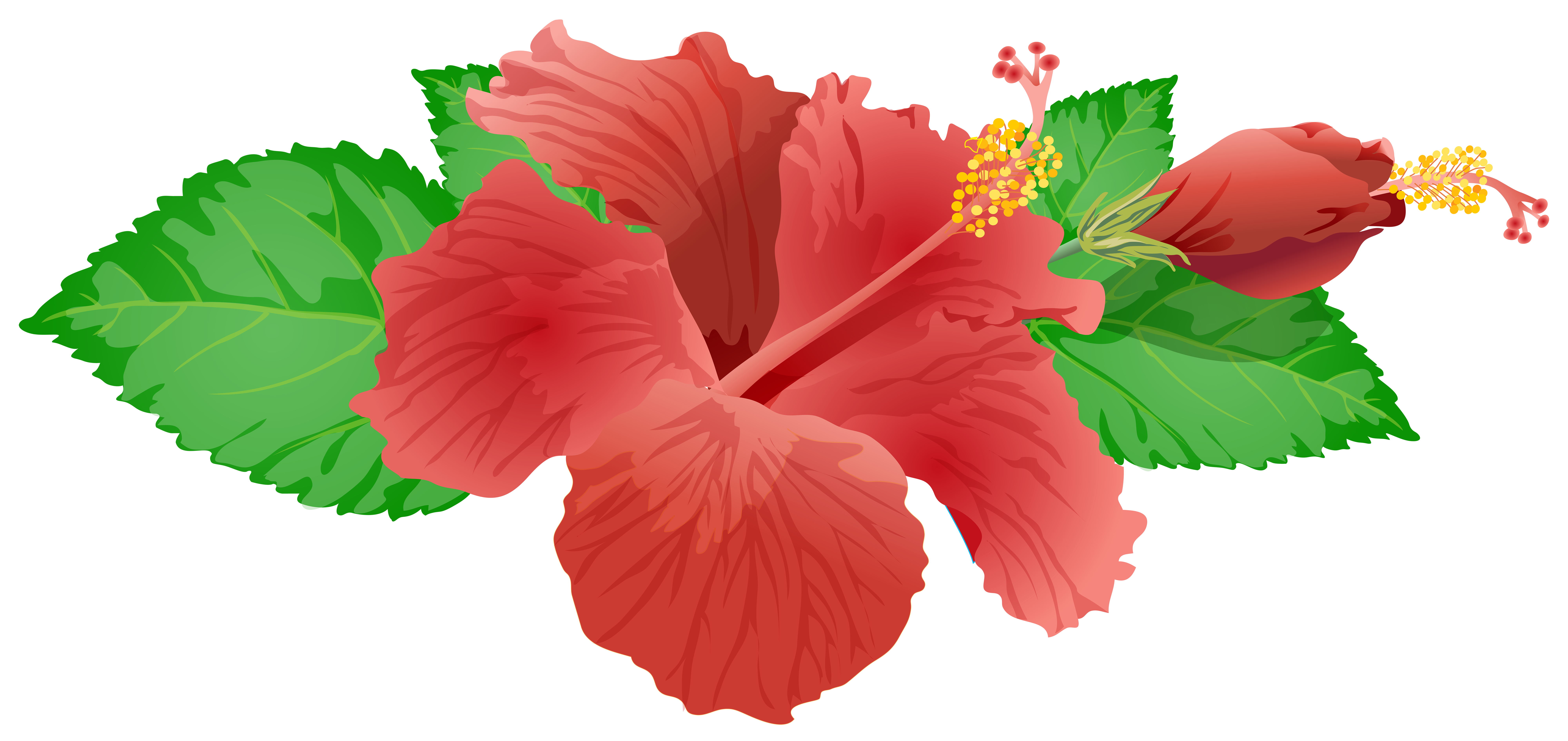 Clip art image best. Red flower png