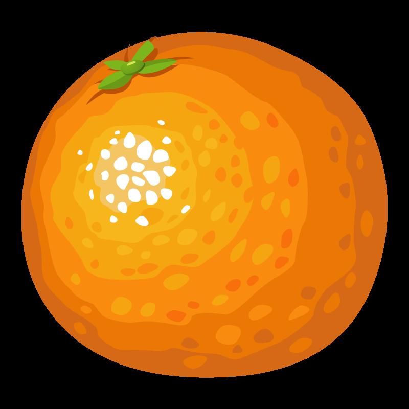 Orange medium image png. Food clipart ball